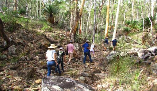 wallaroo qld roma outback experience